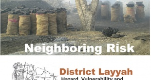 Rural Profiling - Layyah District Profile