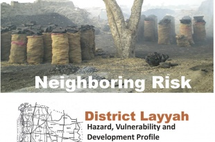 Rural Profiling - Layyah District Profile
